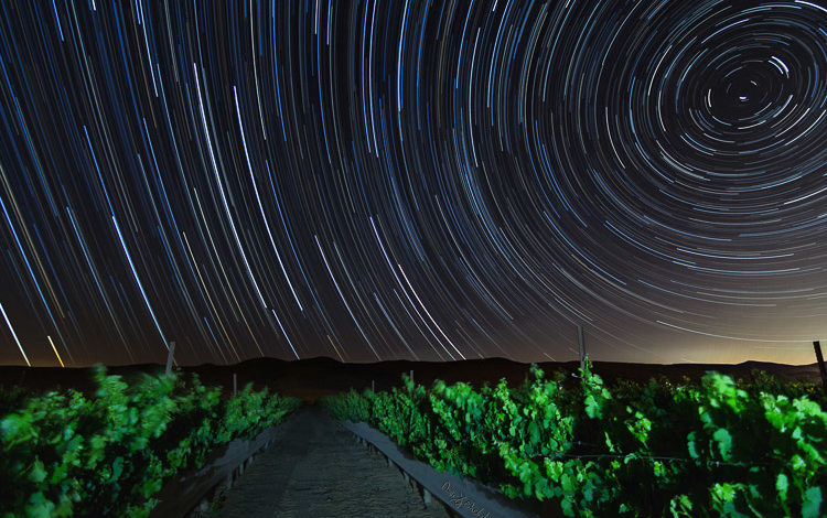 Tips for Successful Star Trails Photography