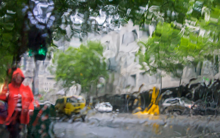 Tips for How to Make the Most of Rainy Days