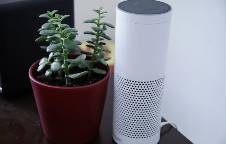 Oops! Don't say 'Google' in your Alexa voice app, Amazon said
